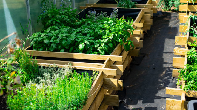Hochbeetgarten im Gartenblog