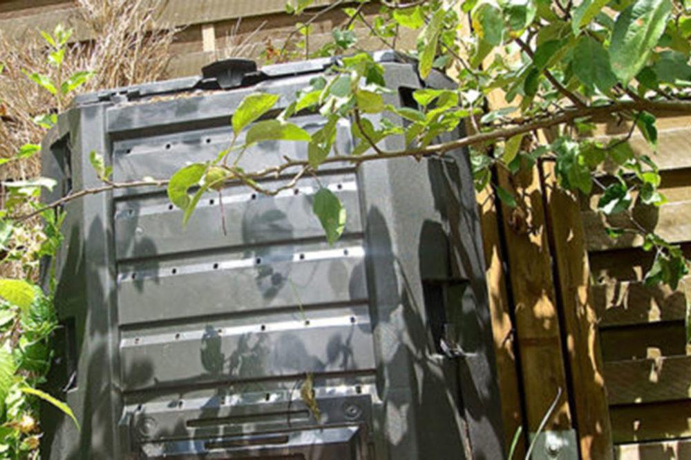 Komposter Standort und was gehoert hinein